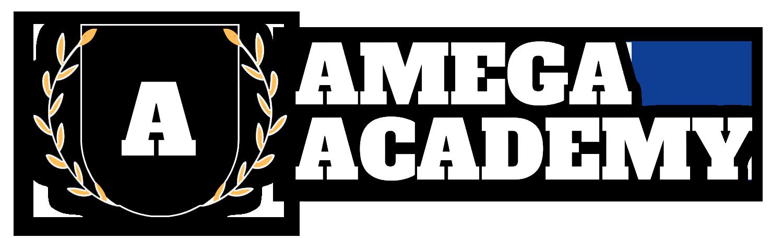 AMEGA Academy - Школа заработка в интернете